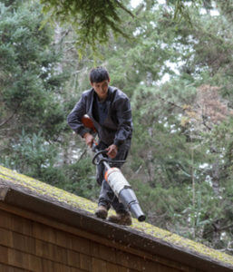 man cleaning moss off shingles